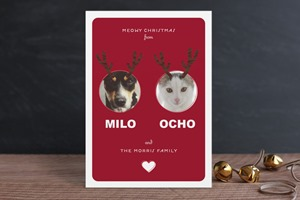 Minted Christmas Card Reinpet